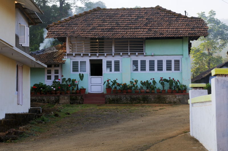 33_kakkabe_morning_walk_coorg_house