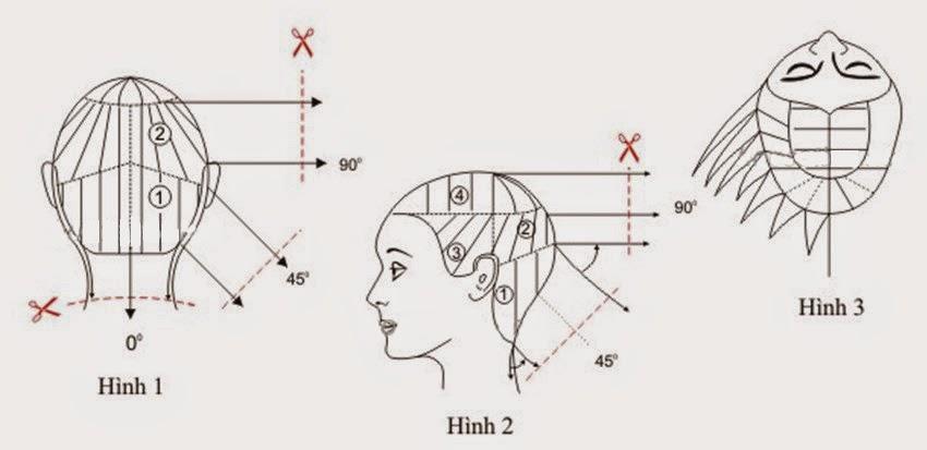 Day cat toc nu co ban kieu toc tem nhat 11 Dạy cắt tóc nữ cơ bản, Kiểu tóc tém Nhật