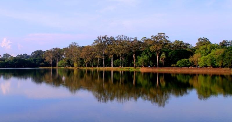 Stillness of the Lake