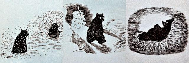 나는 곰이라구요