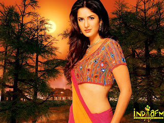 Top Bollywood Celebrity Wallpapers