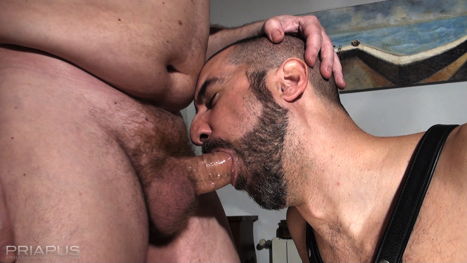 Hairy Bears Blowjob for an Auntie Queen - Free Porn