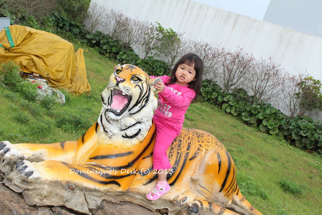 Riding on a Tiger