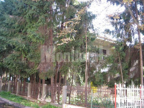 Cum arăta vila Moroşan în urmă cu doi ani