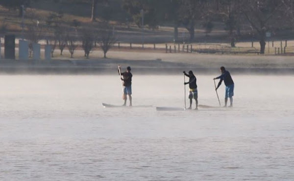 paddleboards on lake burley griffin