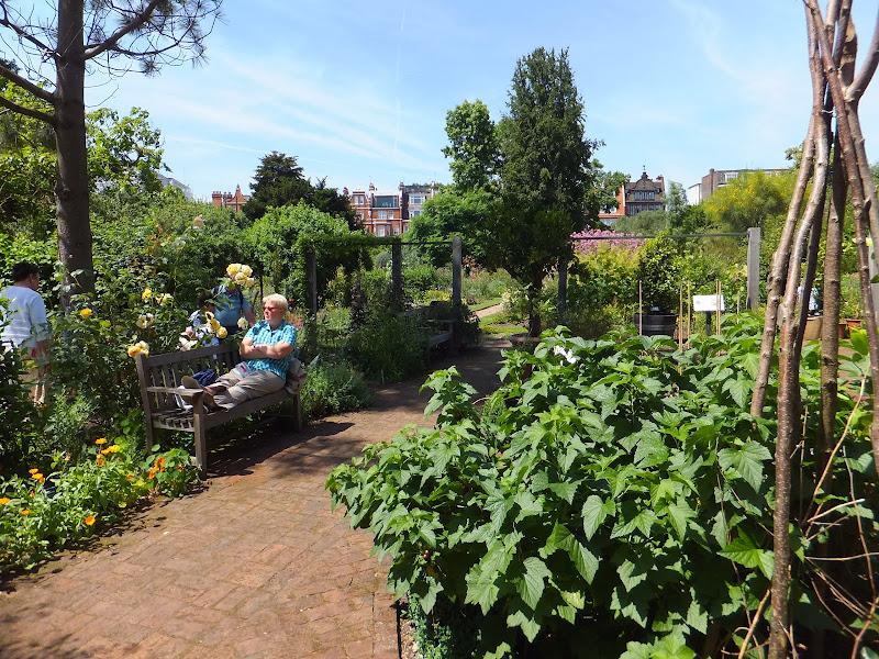Chelsea Physic Garden, Londres, London, Elisa N, Blog de Viajes, Lifestyle, Travel
