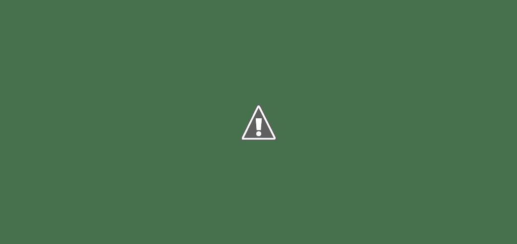 Как выбрать и где купить оптический прицел. Обзор магазинов оптических прицелов, цены, отзывы, ассортимент