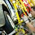 Empresarios ratifican las proyecciones de crecimiento para el último trimestre