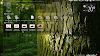 Instalar Android Studio en Ubuntu desde repositorio