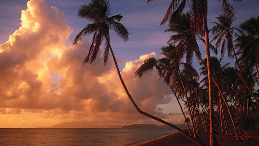 Tropical Paradise at Sunset.jpg