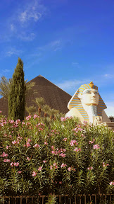 Admiring the daytime view of the pyramid casino of the Luxor on the Las Vegas strip