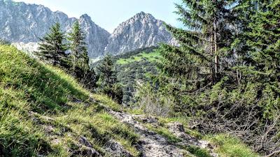 Blick Gaisalphorn vom Steig zum Gaisalpsee Oberstdorf Allgäu