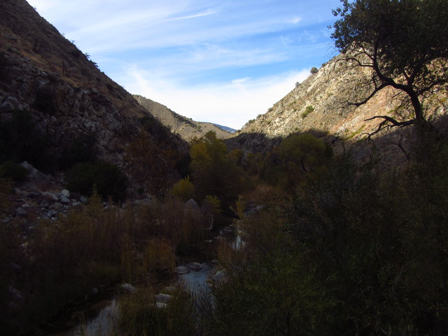 a view of the creek from high on the canyon wall