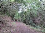 Zeile Creek Trail