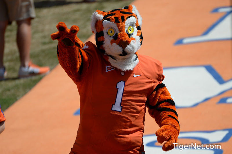 SC State vs. Clemson Photos - 2013, Football, SC State, The Tiger
