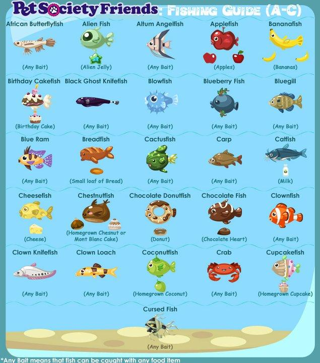 Pet fish list pet fish list pictures 2017 fish tank for List of fish that can live with bettas