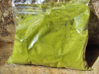 ashitaba powder sembalun lombok