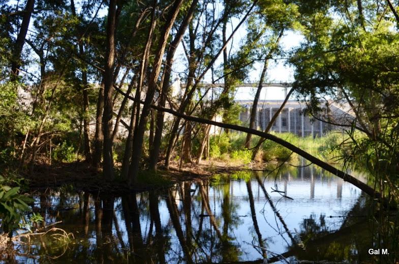 אל מול הטבע - סכר הנסן