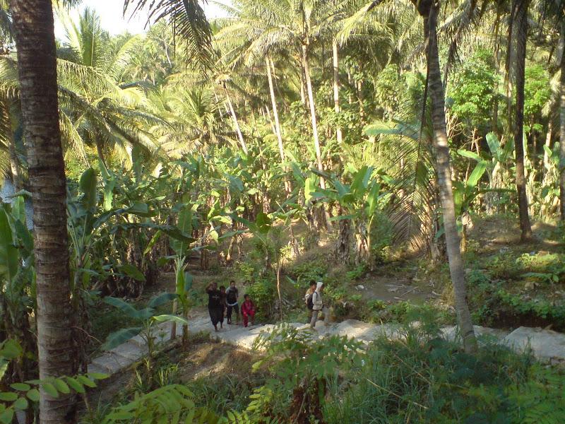 Jalan Setapak Menuju Sungai Oya