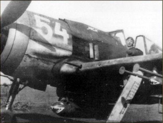Fw190F8shark2.jpg