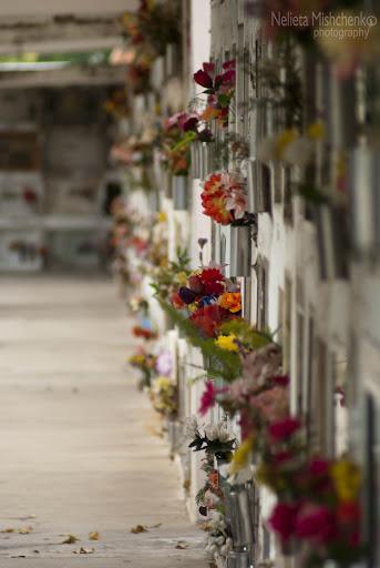 Alta Gracia Cemetery in Argentina