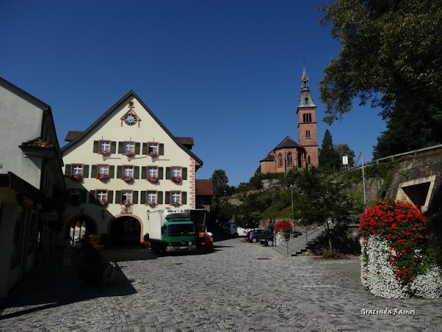passeando - Passeando pela Suíça - 2012 - Página 14 DSC04887