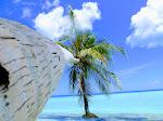 2014 The Maldives