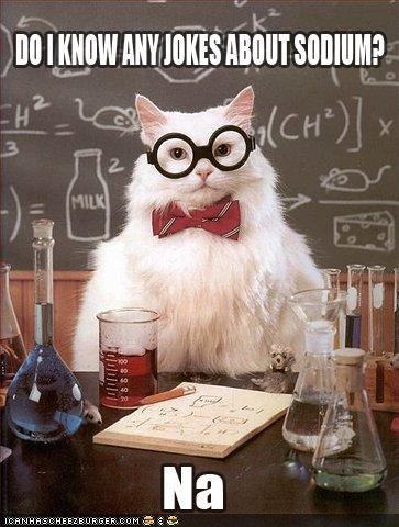 photo of chemistry cat sodium joke...Na