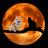 Gary Law avatar image