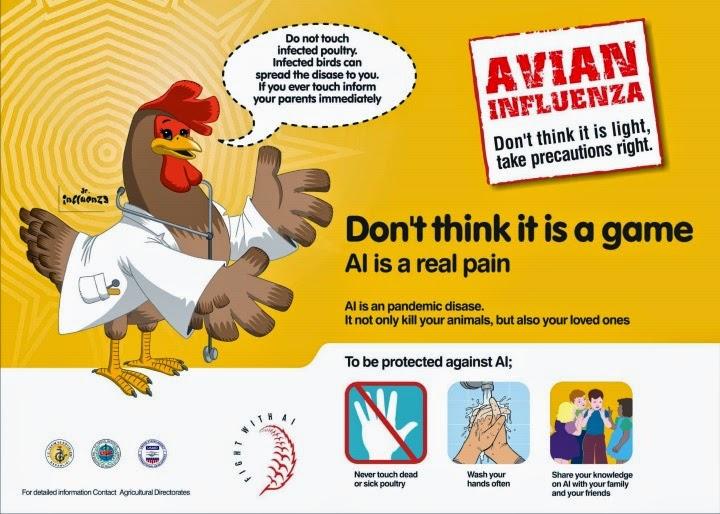 Poster Kampanye Flu Burung