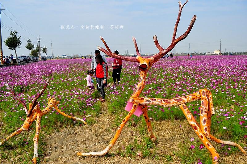 2015南新社區花海節