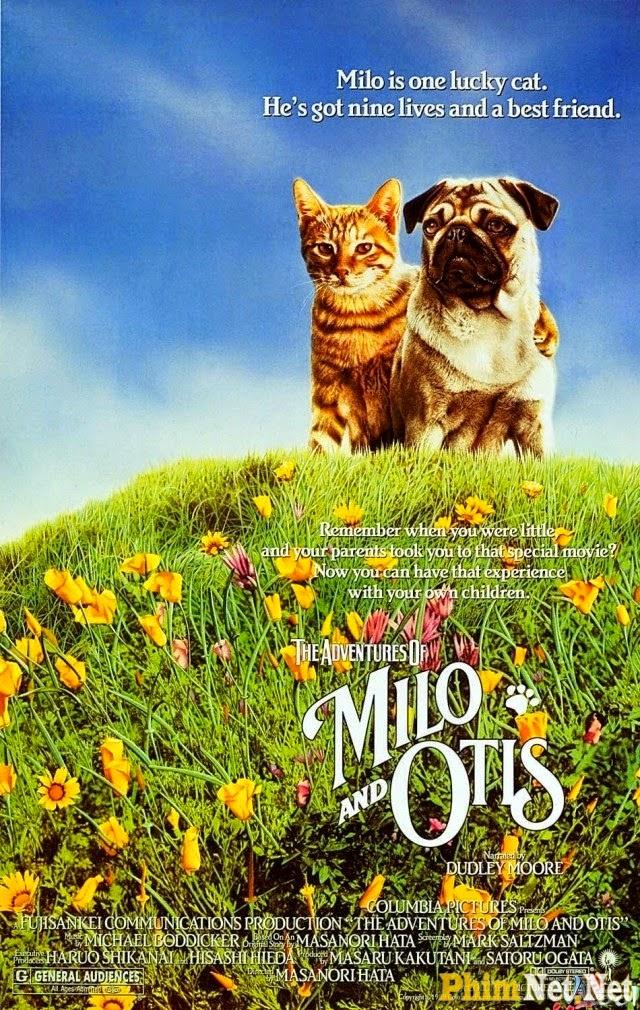 Phim Cuộc Phiêu Lưu Của Chó Và Mèo - The Adventures Of Milo And Otis