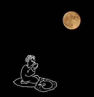 a girl & a sleepy cat under the super moon