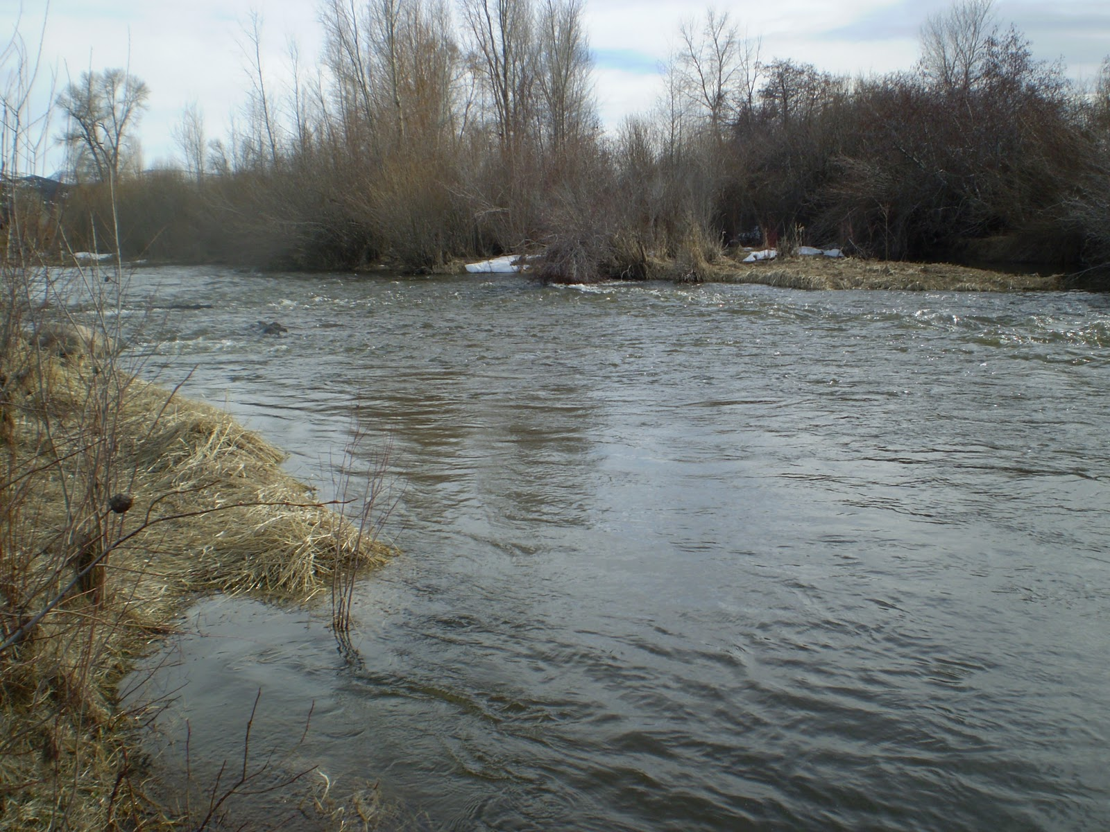 Fly fishing the west with howard high water on the weber for Weber river fishing