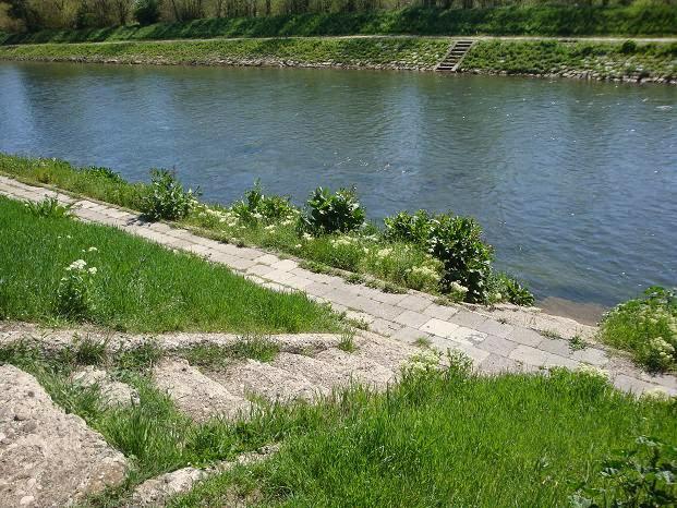Лестницы на реке Тимок