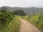 Along North Peak Access Rd.