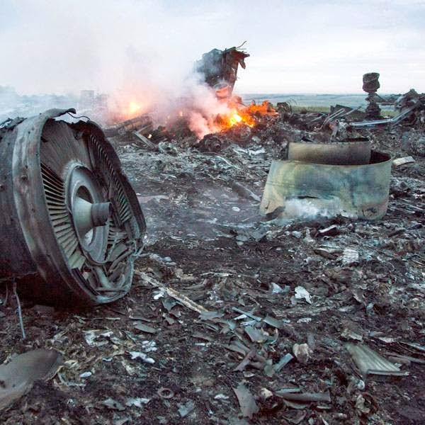The debris at the crash site of a passenger plane near the village of Grabovo, Ukraine, Thursday, July 17, 2014.