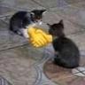 khanh0785680852 avatar