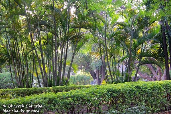 Garden of St. Mary's Church, Pune