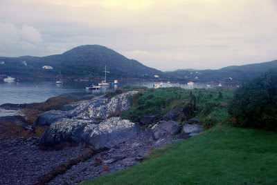 Our front yard in Ireland, at Pier Cove on the Ring of Kerry