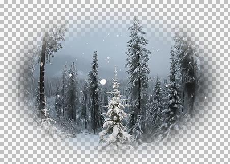 1228382381_paysages.pspimage.jpg