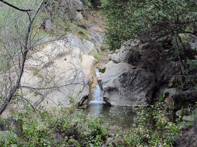 a small waterfall along the stream, and a large pool