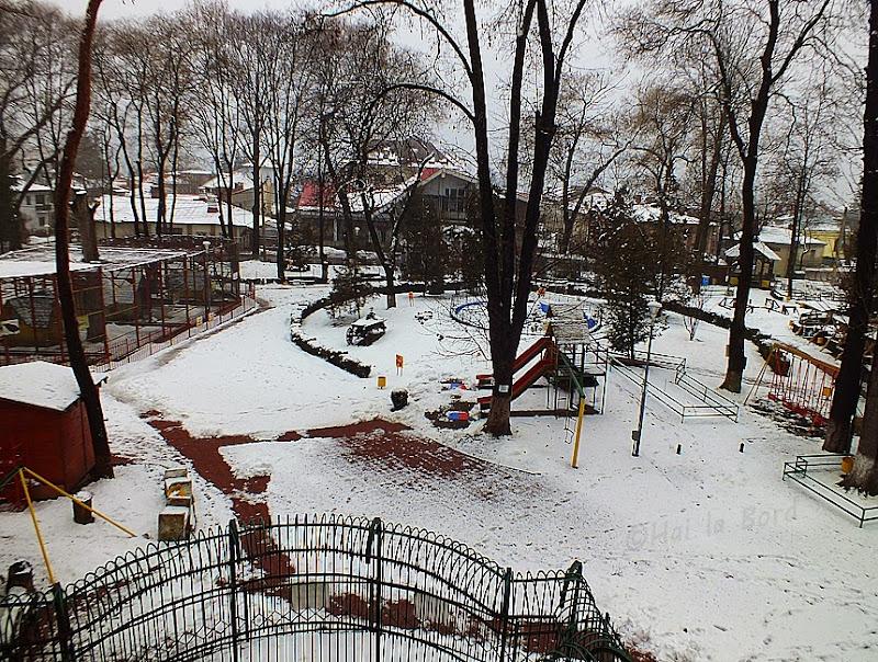 zoo piatra neamt iarna
