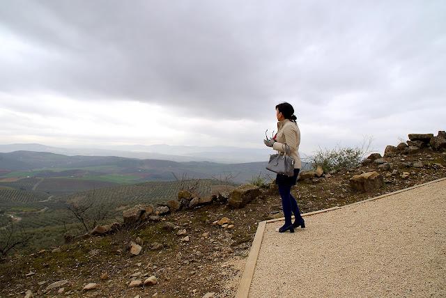 vistas+de+Baena