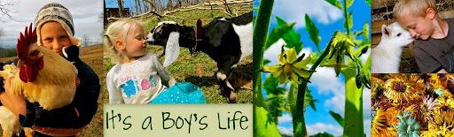 It's a Boy's Life