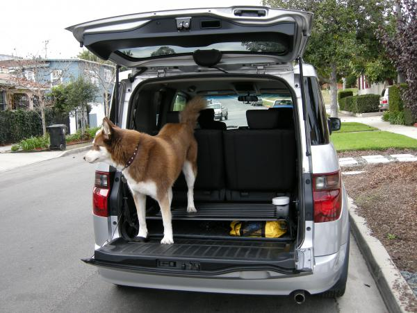 Best car for transporting two huskies User39531_pic3036_1293483670