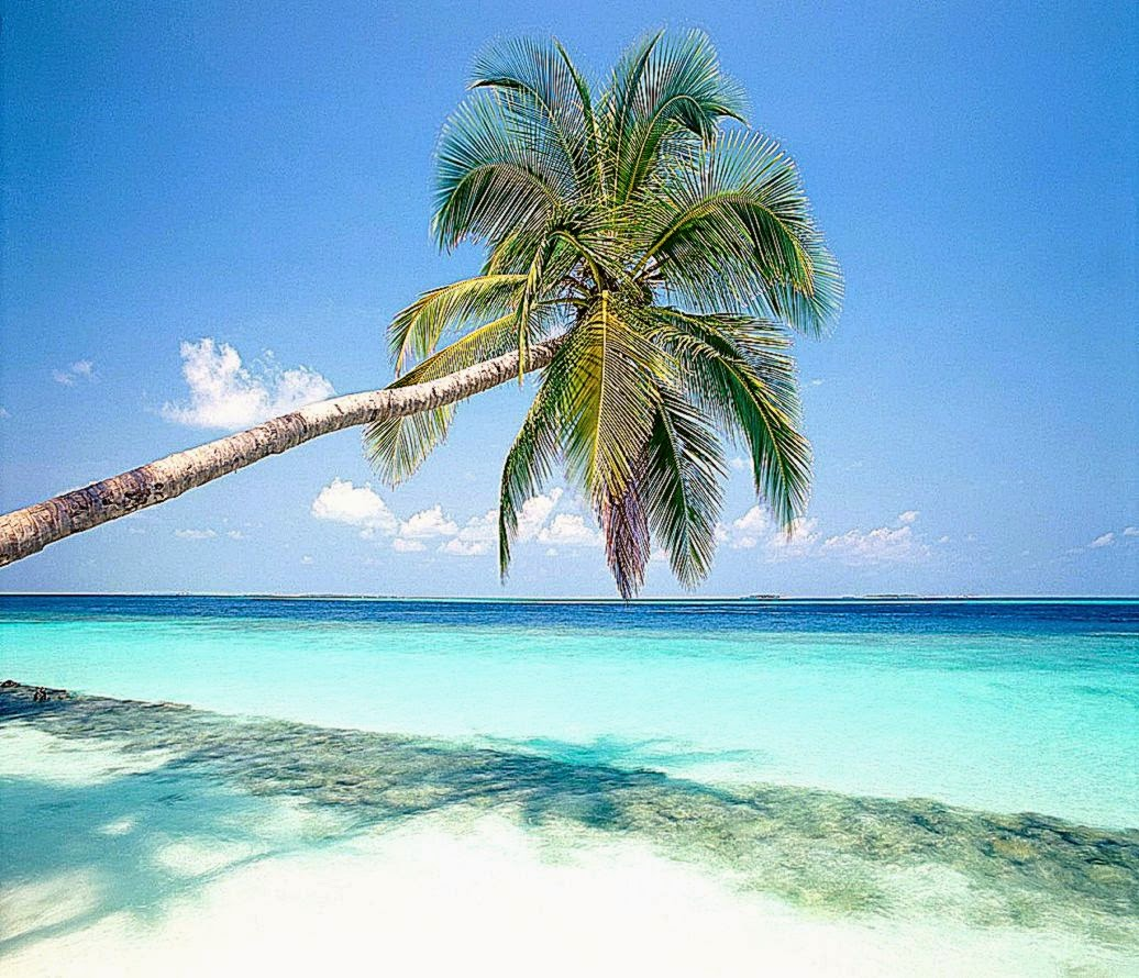 Island Beach Wallpaper: Best Free HD Wallpaper
