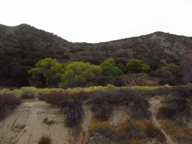 looking across the canyon to the other trail