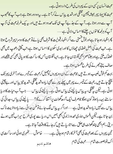mohabbat1 - Mohabbat Ki Shaam