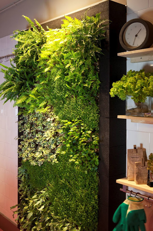 jardn vertical interior barcelona cocina muro verde